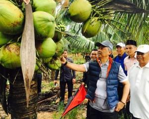 KDYMM Pemangku Raja Pahang Tinjau Operasi Ladang dan Kilang Kelapa (29)