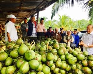 KDYMM Pemangku Raja Pahang Tinjau Operasi Ladang dan Kilang Kelapa (32)