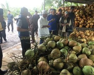 KDYMM Pemangku Raja Pahang Tinjau Operasi Ladang dan Kilang Kelapa (9)